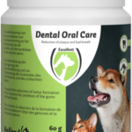 dental oral are