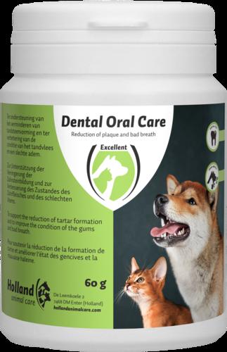 dental oral are