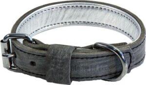 honden halsband dakota grijs