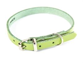 honden halsband leer anijs groen