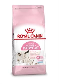 royal canin kitten droge brokjes